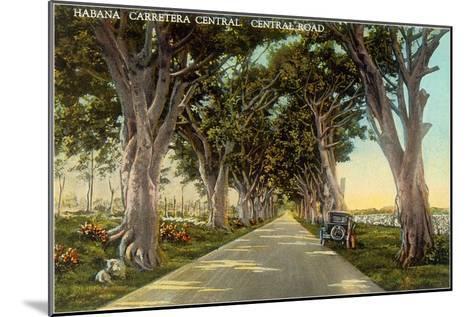 Central Highway, Havana--Mounted Art Print
