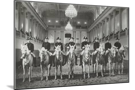 Lippizanner in Spanish Riding School--Mounted Art Print