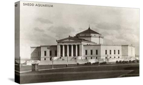 Shedd Aquarium, Chicago, Illinois--Stretched Canvas Print