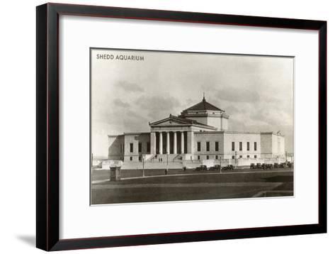 Shedd Aquarium, Chicago, Illinois--Framed Art Print