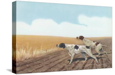 Pointers in Field--Stretched Canvas Print