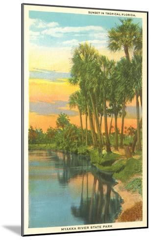 Sunset in Tropical Florida, Myakka River State Park--Mounted Art Print