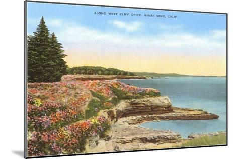 Along West Cliff Drive, Santa Cruz, California--Mounted Art Print