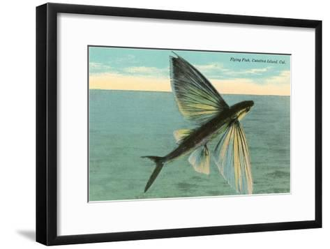 Flying Fish, Catalina, California--Framed Art Print