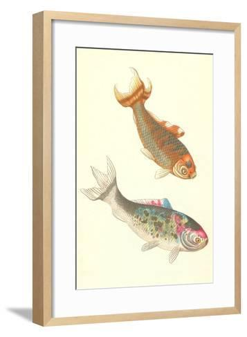 Koi--Framed Art Print