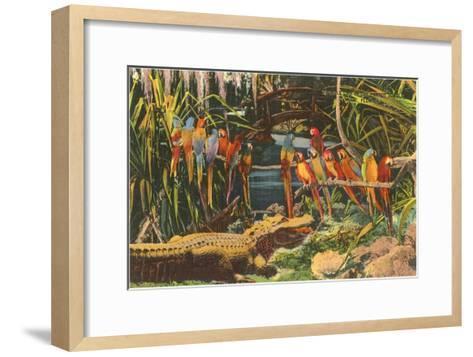Macaws and Alligator, Florida--Framed Art Print