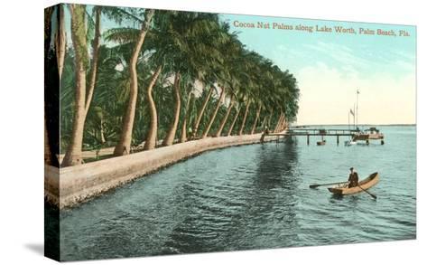 Palms on Lake Worth, Palm Beach, Florida--Stretched Canvas Print