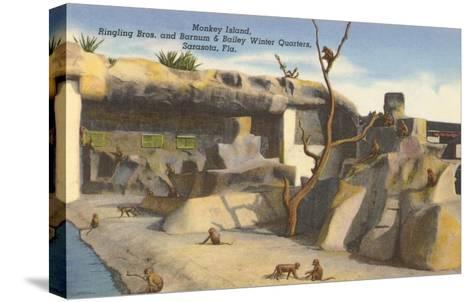 Monkey Island, Circus Quarters, Sarasota, Florida--Stretched Canvas Print