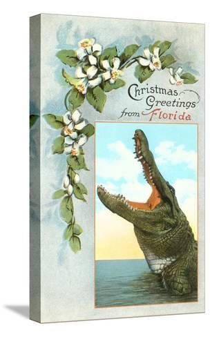 Christmas Greetings from Florida, Alligator--Stretched Canvas Print