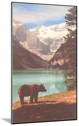 Black Bear near Lake Louise, Alberta, Canada--Mounted Art Print