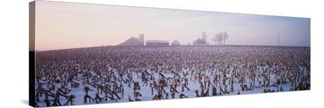 Illinois, Farm, Winter--Stretched Canvas Print