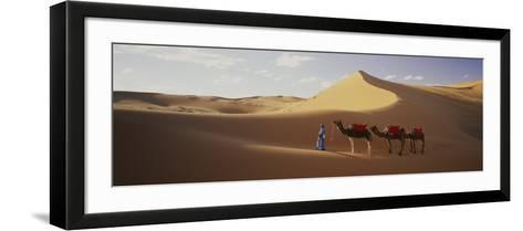Camels in Desert Morocco Africa--Framed Art Print