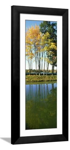 Reflection of Trees in a Lake, New England, USA--Framed Art Print