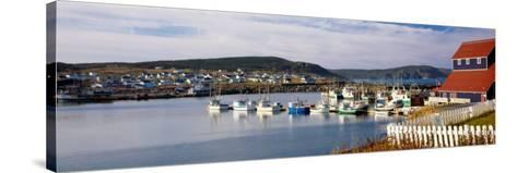 Boats in a Harbor, Bonavista Harbour, Newfoundland, Newfoundland and Labrador, Canada--Stretched Canvas Print