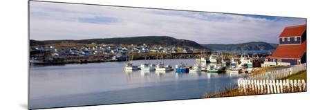 Boats in a Harbor, Bonavista Harbour, Newfoundland, Newfoundland and Labrador, Canada--Mounted Photographic Print