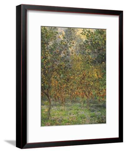 Lemon Trees, 1884-Claude Monet-Framed Art Print