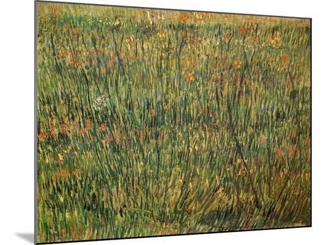 Pasture in Bloom, 1887-Vincent van Gogh-Mounted Giclee Print