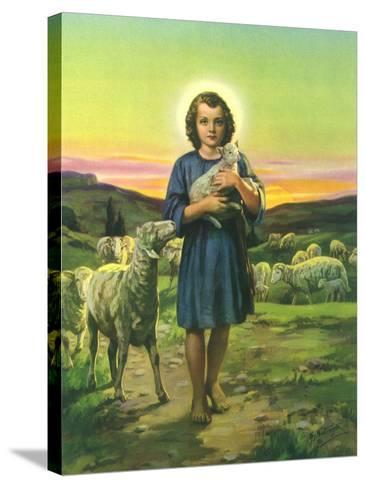Jesus Holding Lamb--Stretched Canvas Print