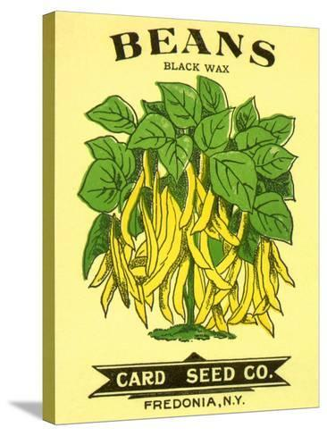 Beans Seed Packet--Stretched Canvas Print
