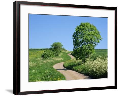 Empty Road Winding Through Countryside, Devon, England, United Kingdom, Europe-Michael Black-Framed Art Print