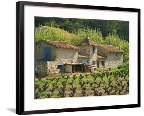 Exterior of a Stone Farmhouse in Vineyard Near Pierrefeu, Var, Provence, France, Europe-Michael Busselle-Framed Art Print