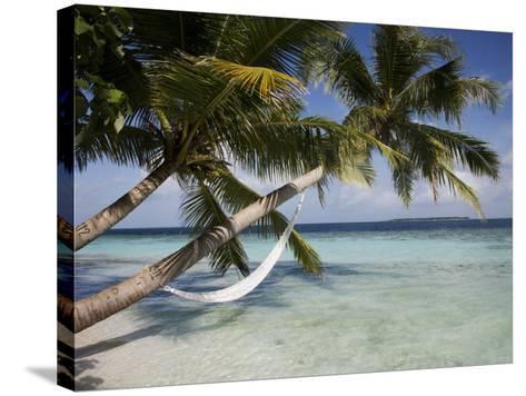 Vilamendhoo Island, Ari Atoll, Maldives, Indian Ocean-Angelo Cavalli-Stretched Canvas Print