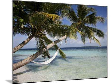 Vilamendhoo Island, Ari Atoll, Maldives, Indian Ocean-Angelo Cavalli-Mounted Photographic Print