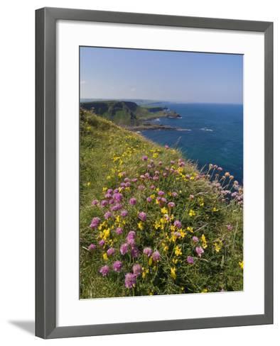 North Antrim Coast Path to the Giant's Causeway, County Antrim, Ulster, Northern Ireland, UK-Neale Clarke-Framed Art Print