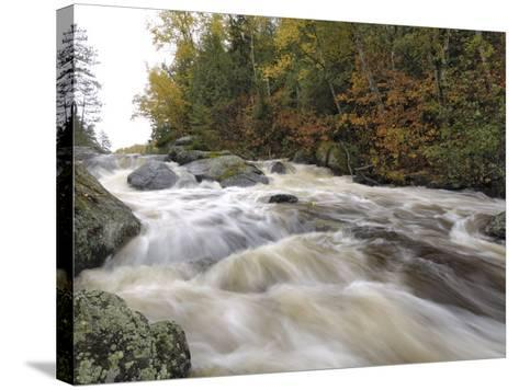 Boundary Waters Canoe Area Wilderness, Superior National Forest, Minnesota, USA-Gary Cook-Stretched Canvas Print
