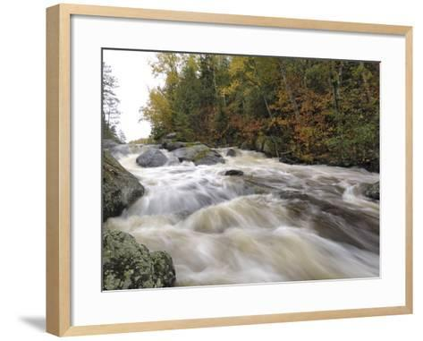 Boundary Waters Canoe Area Wilderness, Superior National Forest, Minnesota, USA-Gary Cook-Framed Art Print