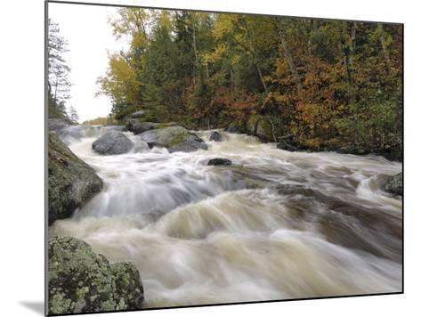 Boundary Waters Canoe Area Wilderness, Superior National Forest, Minnesota, USA-Gary Cook-Mounted Photographic Print