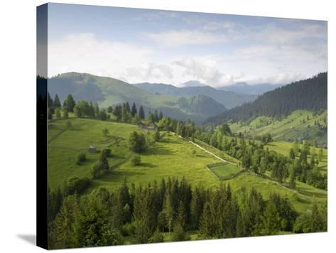Carpathian Mountains North of Campulung Moldovenesc, Moldavia, Southern Bucovina, Romania, Europe-Gary Cook-Stretched Canvas Print