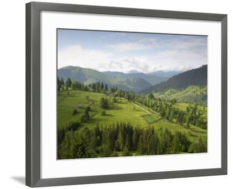 Carpathian Mountains North of Campulung Moldovenesc, Moldavia, Southern Bucovina, Romania, Europe-Gary Cook-Framed Art Print