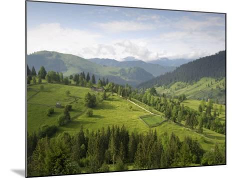 Carpathian Mountains North of Campulung Moldovenesc, Moldavia, Southern Bucovina, Romania, Europe-Gary Cook-Mounted Photographic Print