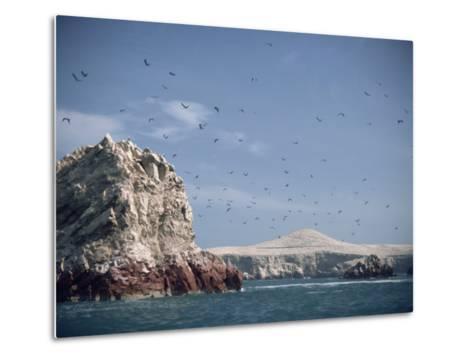 Flock of Birds Above the Coast Near Pisco, Peru, South America-Rob Cousins-Metal Print