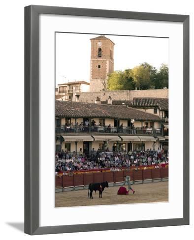 Young Bulls in the Main Square Used as the Plaza De Toros, Chinchon, Comunidad De Madrid, Spain-Marco Cristofori-Framed Art Print