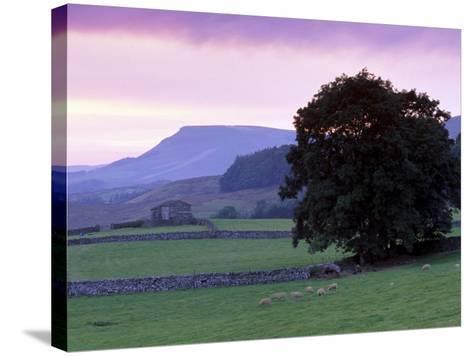 Spectacular Sunset Near Hardraw in Wensleydale, Yorkshire Dales National Park, Yorkshire, England-Patrick Dieudonne-Stretched Canvas Print