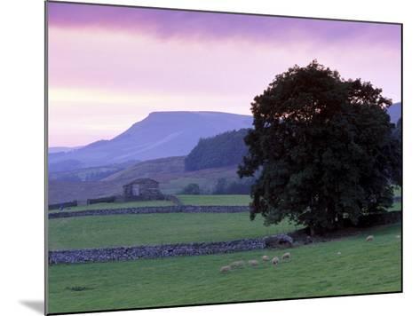 Spectacular Sunset Near Hardraw in Wensleydale, Yorkshire Dales National Park, Yorkshire, England-Patrick Dieudonne-Mounted Photographic Print