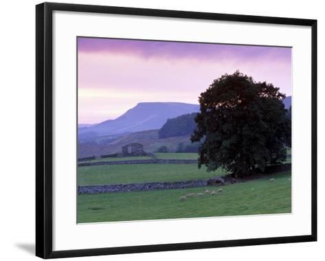 Spectacular Sunset Near Hardraw in Wensleydale, Yorkshire Dales National Park, Yorkshire, England-Patrick Dieudonne-Framed Art Print