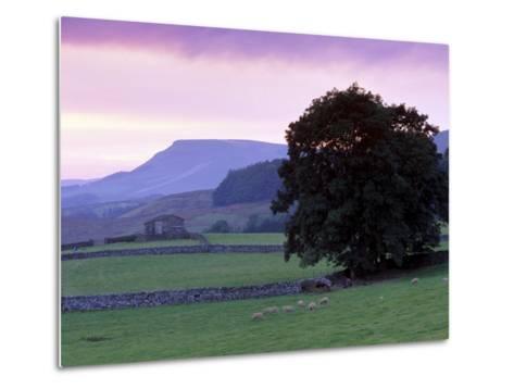 Spectacular Sunset Near Hardraw in Wensleydale, Yorkshire Dales National Park, Yorkshire, England-Patrick Dieudonne-Metal Print
