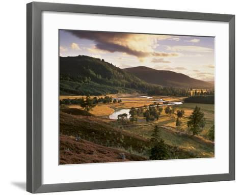 Upper Dee Valley Near Inverey, Deeside, Aberdeenshire, Scotland, United Kingdom, Europe-Patrick Dieudonne-Framed Art Print
