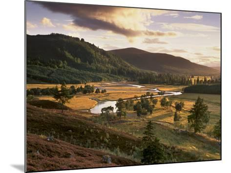 Upper Dee Valley Near Inverey, Deeside, Aberdeenshire, Scotland, United Kingdom, Europe-Patrick Dieudonne-Mounted Photographic Print