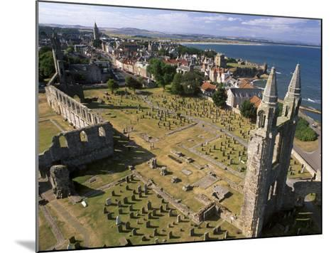 Ruins of St. Andrews Cathedral, Dating from the 14th Century, St. Andrews, Fife, Scotland-Patrick Dieudonne-Mounted Photographic Print