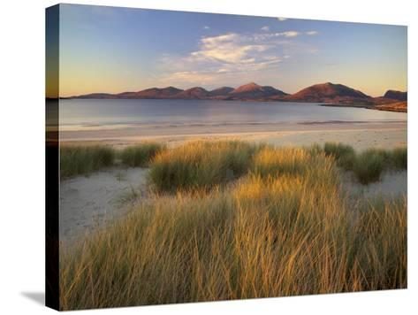 Marram Grass and Beach Near Luskentyre, Towards North Harris Forest Hills, South Harris, Scotland-Patrick Dieudonne-Stretched Canvas Print