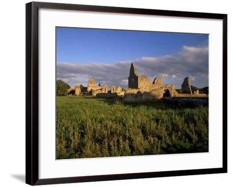 Athassel Priory, Near Cashel, County Tipperary, Munster, Republic of Ireland-Patrick Dieudonne-Framed Art Print