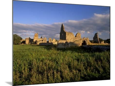 Athassel Priory, Near Cashel, County Tipperary, Munster, Republic of Ireland-Patrick Dieudonne-Mounted Photographic Print