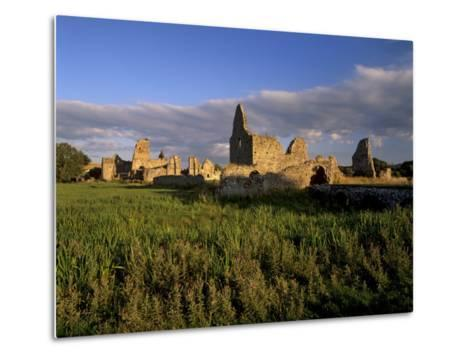 Athassel Priory, Near Cashel, County Tipperary, Munster, Republic of Ireland-Patrick Dieudonne-Metal Print