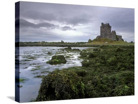 Dunguaire Castle and Coast, Near Kinvarra, County Galway, Connacht, Republic of Ireland-Patrick Dieudonne-Stretched Canvas Print