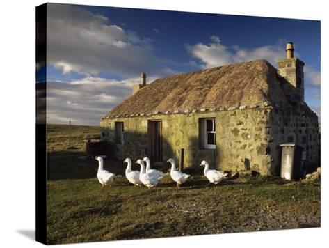 Thatched House, Howmore, South Uist, Outer Hebrides, Scotland, United Kingdom, Europe-Patrick Dieudonne-Stretched Canvas Print