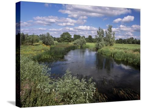 River Suir, Not Far from Cashel, County Tipperary, Munster, Republic of Ireland, Europe-Patrick Dieudonne-Stretched Canvas Print